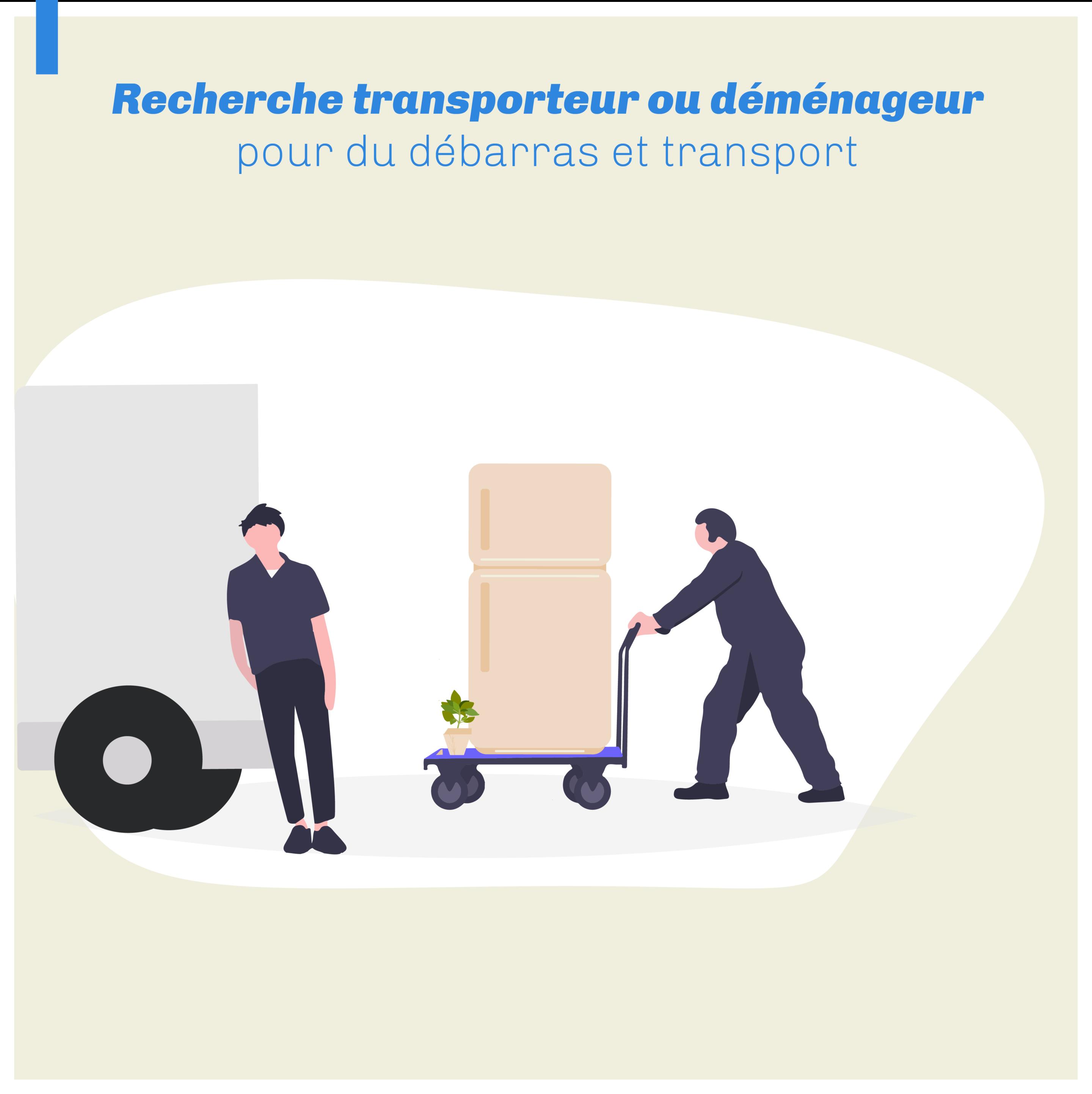 Transporteur débarrasseur 2