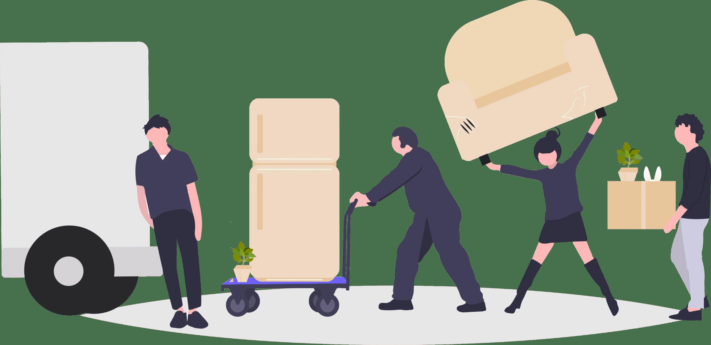 Transporteur débarrasseur 1