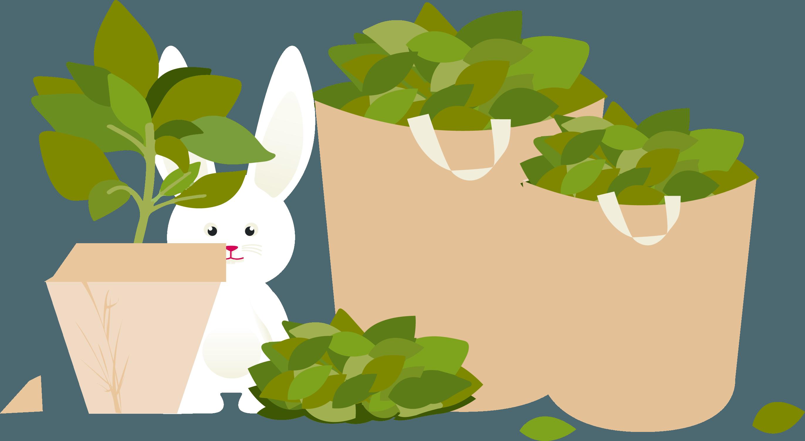 Déchets de jardin 1