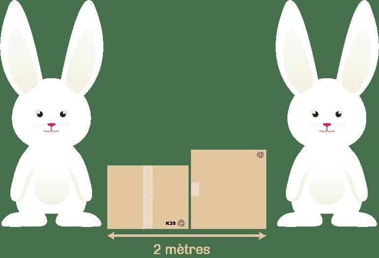 Débarras sans contact 2
