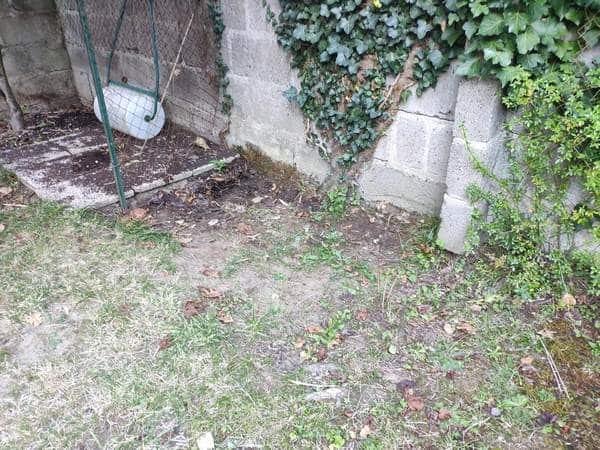 Débarras de gravats et déchets verts à Nantes 1